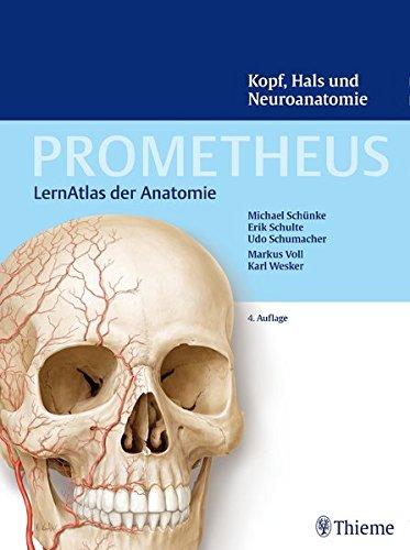Kopf Hals und Neuroanatomie Prometheus LernAtlas der Anatomie 0