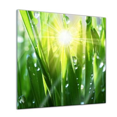 Bilderdepot24 Glasbild Gras II 0 1